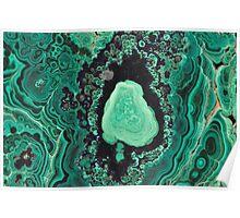 Earth's hidden Treasures Plate # 1 Poster