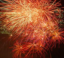 Celebration by Joanne  Bradley