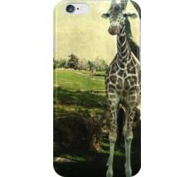 I Thought You Always Wanted To Be a Giraffe iPhone Case/Skin