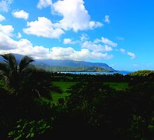 Hanalei Bay Postcard by Michaela Byrd