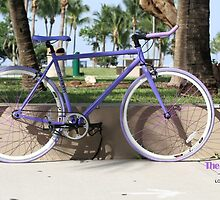 Buy Single Speed Bikes In Miami  by locofixie