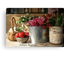 Antique Boutique Canvas Print