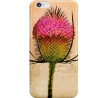 The Teasel iPhone Case/Skin