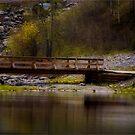 Elbow Bridge by Robin Webster