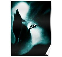 Night Howlers Poster