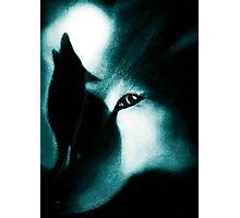 Night Howlers Photographic Print