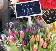 Flowers For Sale--Chicago Street Market by Erica Lipper