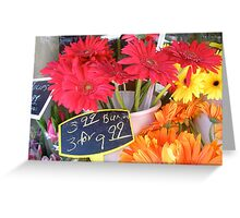 Daisies For Sale--Chicago Street Market Greeting Card