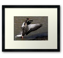 With These Wings Framed Print