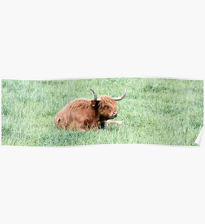 A Coo Cooling Poster
