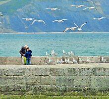 Feeding The Gulls At Lyme by lynn carter