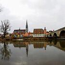 View over Regensburg  by Hans Kool