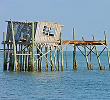 Old Boat House at Cedar Key by michaelBstone
