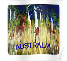 Roos in the Grass  Poster