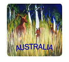 Roos in the Grass  Photographic Print