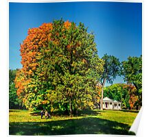 Autumn warm days in the park Poster