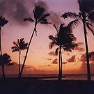 Hawaiian Sunset, Waikiki Beach, Oahu, Hawaii, USA by Adrian Paul