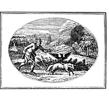 SHEPHERD by tonykinglux