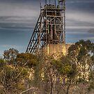 Mining In The Bush by Rod Wilkinson