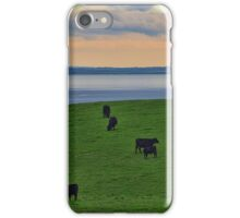 Black Cows on a Green Hill iPhone Case/Skin