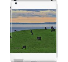 Black Cows on a Green Hill iPad Case/Skin