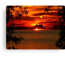 Framed by the Trees Canvas Print