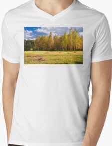 Glade with birches Mens V-Neck T-Shirt