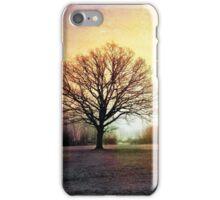 Winter in Tooting Bec Common iPhone Case/Skin