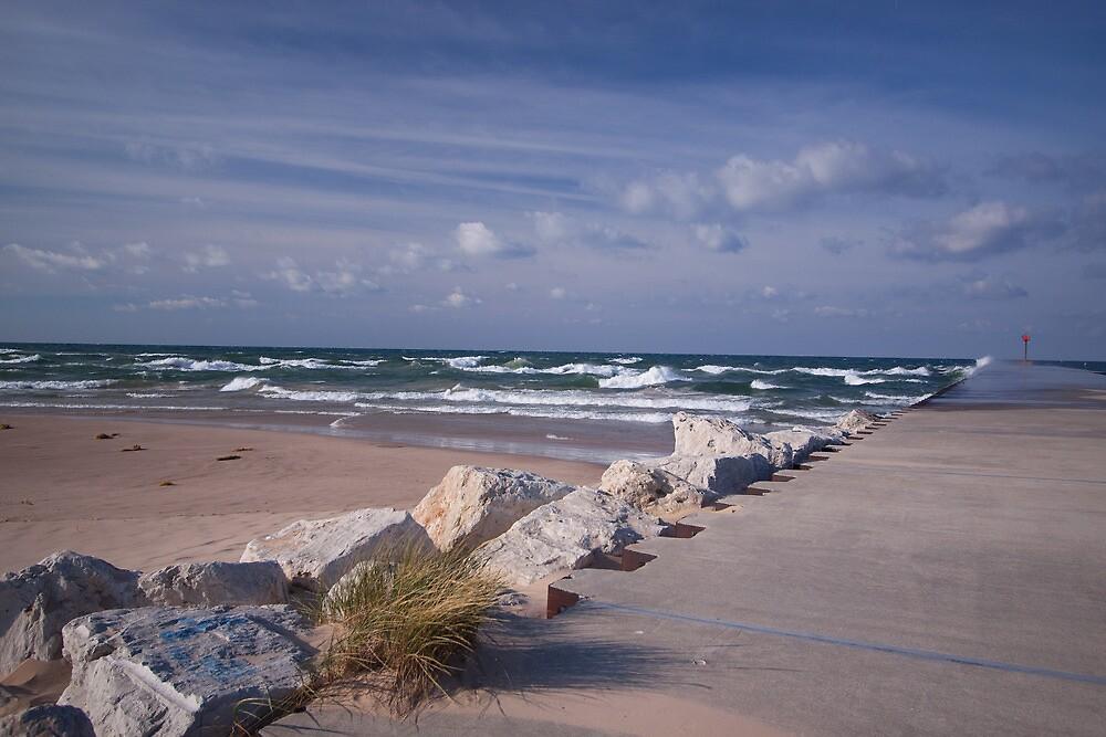 Lake Michigan Shoreline by Rick Montgomery