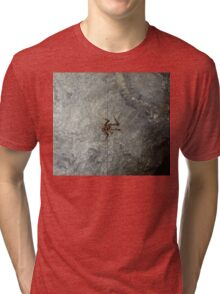 Cave Weta, Zealandia, New Zealand Tri-blend T-Shirt
