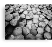 Giant's Causeway, Northern Ireland Canvas Print