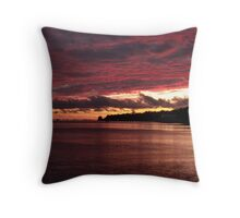 Rose Colored World Throw Pillow