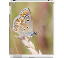 Lady Blue iPad Case/Skin