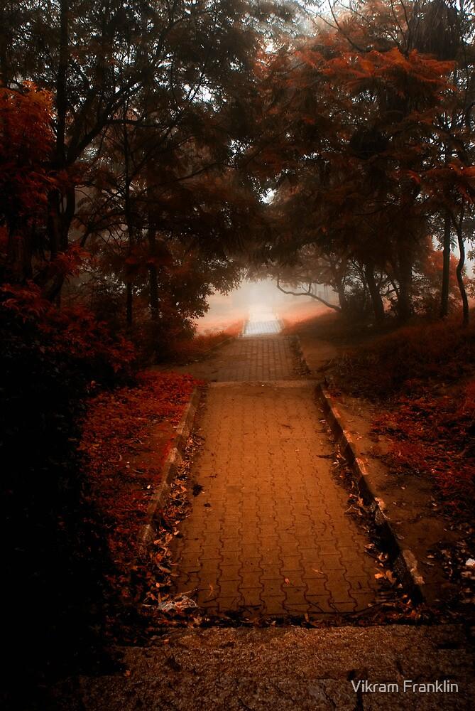It was a foggy autumn morning ..... by Vikram Franklin