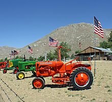 Patriotic Tractors For Sale in the Country by Corri Gryting Gutzman