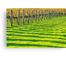 vineyard bars Canvas Print