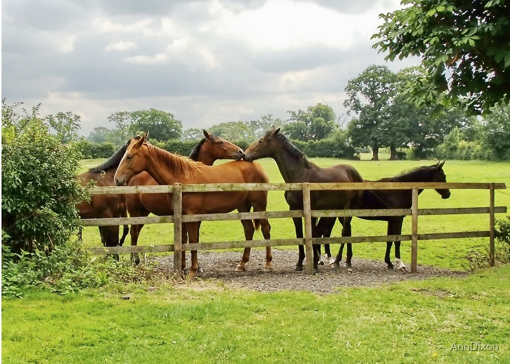 Five Horses Home on the Farm by AnnDixon