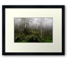 High Country Mist Framed Print