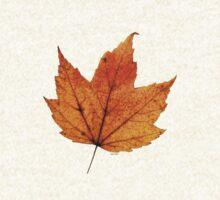Orange Leaf by Pam Clark
