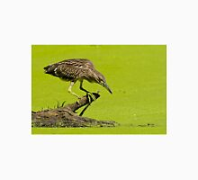 Black Crowned Night Heron T-Shirt