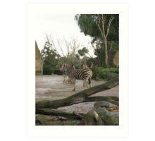 Inner Zebra Art Print