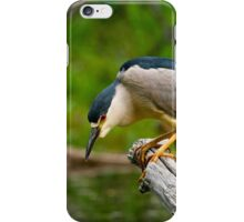 Black Crowned Night Heron iPhone Case/Skin