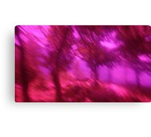 Hollow Hill Trees n°4 Canvas Print
