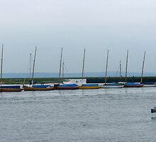 Pretty yachts all in a row by Ian Ker