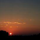 Goodmorning REDBUBBLERS...... by Larry Llewellyn