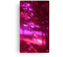 Hollow Hill Trees n°3 Canvas Print
