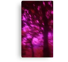 Hollow Hill Trees n°2 Canvas Print
