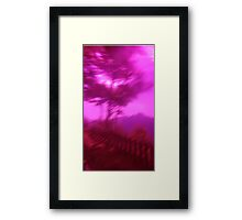 Hollow Hill Trees n°1 Framed Print