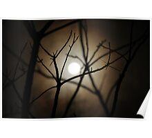 Moonlit Haze Poster