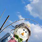 Garden Scarecrow by naffarts